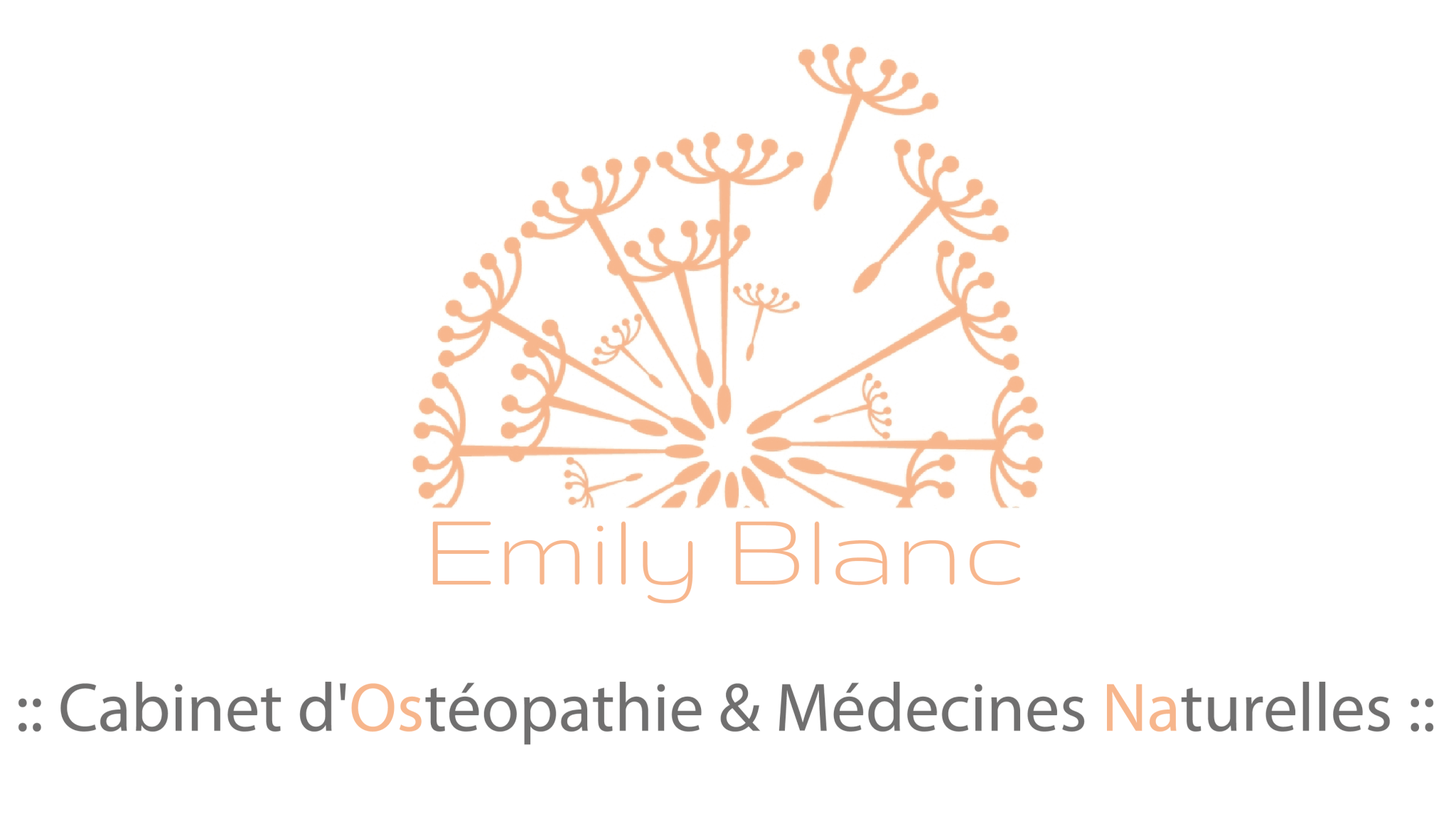 Logo OSNA Emily Blanc